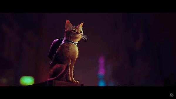 主人公(?)の猫が超カワイイ